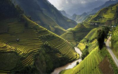 Les Meilleures Stratégies pour attirer les touristes chinois au Vietnam